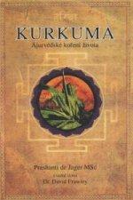 Kurkuma ájurvédské koření života