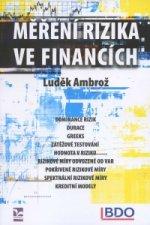 Měření rizika ve financích