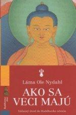 Ako sa veci majú súčaasný úvod do Buddhovho učenia