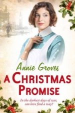 Christmas Promise