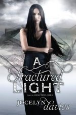 Fractured Light