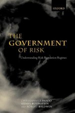 Government of Risk