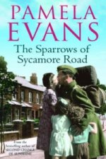 Sparrows of Sycamore Road