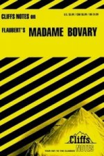 Notes on Flaubert's Madame Bovary