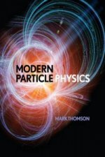 Particle & high-energy physics