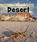 Living & Non living In The Desert