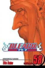 Bleach, Vol. 58