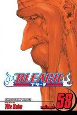 Bleach, Vol. 58