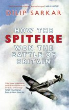 How the Spitfire Won the Battle of Britain