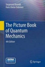 Picture Book of Quantum Mechanics