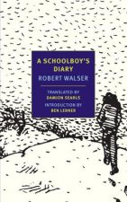 Schoolboy's Diary and Other Stories