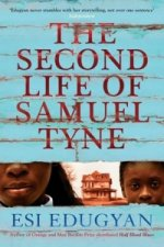 Second Life of Samuel Tyne