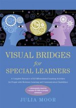 Visual Bridges for Special Learners
