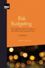 Risk Budgeting: Risk Appetite and Governance in the Wake of