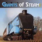 Giants of Steam 2014
