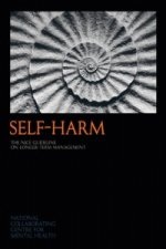 Self-Harm: The NICE Guideline on Longer-term Management