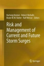 Risk and Management of Current and Future Storm Surges