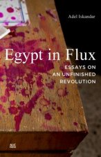Egypt in Flux