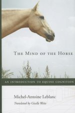Mind of the Horse