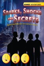 Sparks, Shocks and Secrets - Explore Electricity and Use Sci