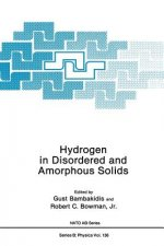 Hydrogen in Disordered and Amorphous Solids