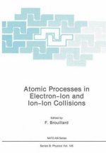 Atomic Processes in Electron-Ion and Ion-Ion Collisions
