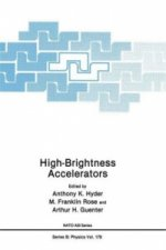 High-Brightness Accelerators