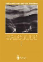 Calculus. Vol.1