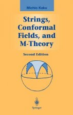 Strings, Conformal Fields, and M-Theory
