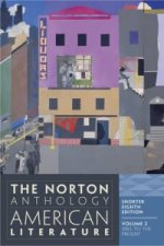 The Norton Anthology of American Literature (Shorter Eighth Edition). Vol.2