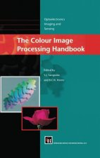 The Colour Image Processing Handbook