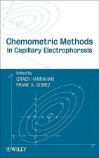 Chemometric Methods in Capillary Electrophoresis