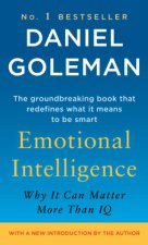 Emotional Intelligence. Emotionale Intelligenz, EQ, engl. Ausgabe