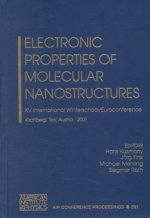 Electronic Properties of Molecular Nanostructures: