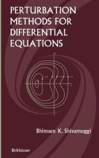 Perturbation Methods for Differential Equations