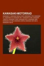 Kawasaki-Motorrad