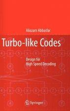 Turbo-like Codes