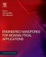Engineered Nanopores for Bioanalytical Applications