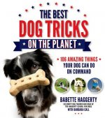 Best Dog Tricks on the Planet