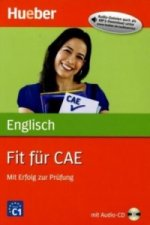 Fit für CAE, m. Audio-CD