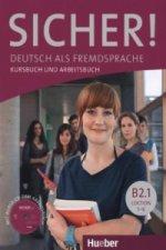 Deutsch als Fremdsprache / Kurs- und Arbeitsbuch mit CD-ROM zum Arbeitsbuch, Lektion 1 - 6. Tl.B2.1