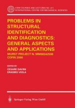 Problems in Structural Identification and Diagnosis