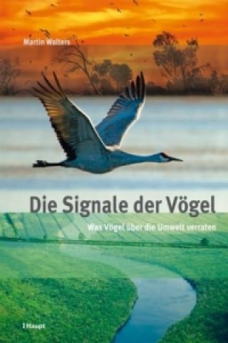 Die Signale der Vögel