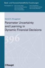 Parameter Uncertainty and Learning in Dynamic Financial Decisions