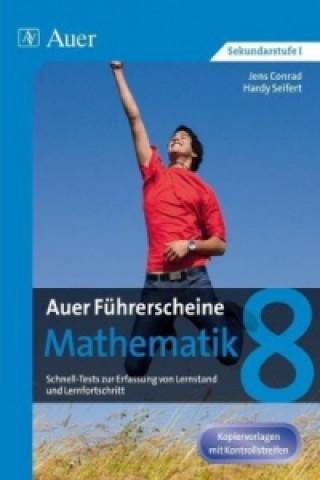 Auer Führerscheine Mathematik Klasse 8