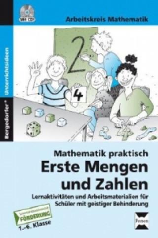 Mathematik praktisch: Erste Mengen und Zahlen