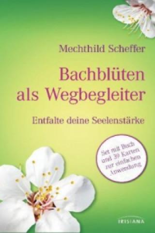 Bachblüten als Wegbegleiter-Set 39 Ktn.