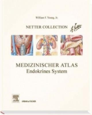 Medizinischer Atlas, Endokrines System