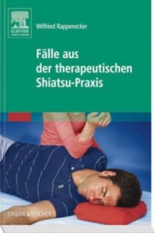 Fälle aus der therapeutischen Shiatsu-Praxis