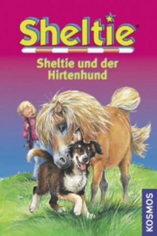 Sheltie und der Hirtenhund